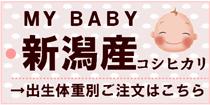 MY BABY「新潟産コシヒカリ」