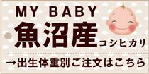 MY BABY「魚沼産コシヒカリ」